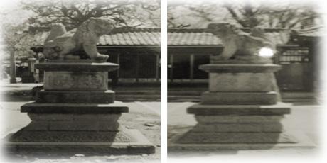深志神社の狛犬
